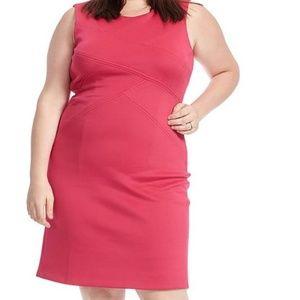 Scuba Dress In Rose